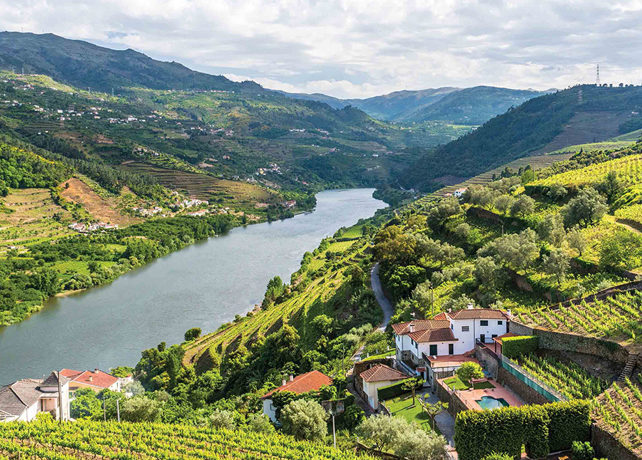 Villages and Vintages: Cruising the Douro River Valley  2021